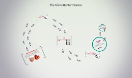 The Silent Barter Process