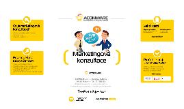 Marketingová konzultace