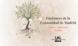 Encinares de la Comunidad de Madrid