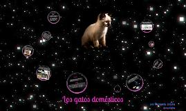 Los gatos domésticos by Fernanda Jacobo