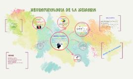 Copy of nEUROFISIOLOGIA DE LA MEMORIA