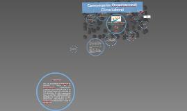 Comunicacion Organizacional en las empresas: Clima Laboral