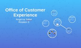 Office of Customer Experience