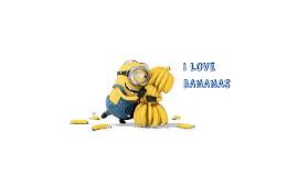 Copy of I LOVE BANANAS