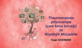 Thaumetopoea pityocampa(çam kese böceği) ile Biyolojik Müca