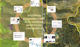iniciativas conjuntas Lidar /flujo continuo producción cart