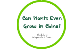 Can Plants Even Grow in China