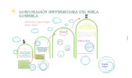 UDE - BIENESTAR UNIVERSITARIO - PROGRAMACIÓN