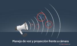 Manejo de voz y proyección frente a cámara