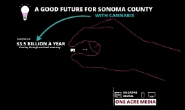 Local Cannabis System Sonoma County