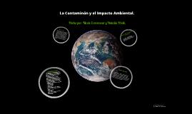 La Contaminación y el Impacto Ambiental