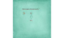 Chlorella vulgaris (USM 101) y Chlamydomonas sp.