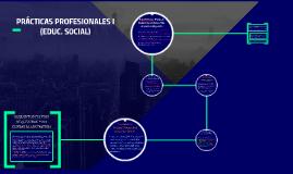 PRÁCTICAS PROFESIONALES I (EDUC. SOCIAL)