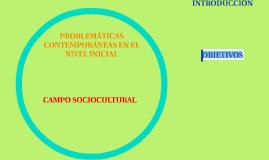 PROBLEMÁTICAS CONTEMPORÁNEAS EN EL NIVEL INICIAL