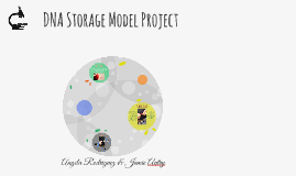 DNA Storage Model Project