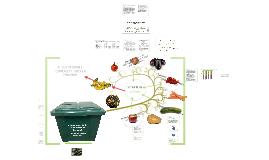 Green Food Box - Boîte Verte