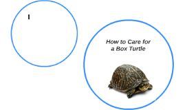 How to Care for