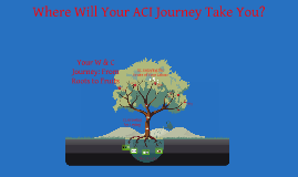 Your ACI Journey: From Roots to Fruits