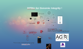 EnglishUpdateDITBio for Genomic Integrity