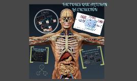 FACTORES QUE ALTERAN LA EXCRECIÓN by Dra Adris DeHouse on..