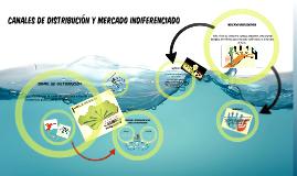 CANALES DE DISTRIBUCION Y MERCADO INDEFERENCIADO