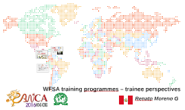 WFSA training programmes – trainee perspectives
