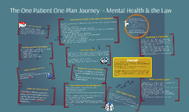 The One Patient One Plan Journey_For Print