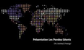 Présentation Les Pandas Géants