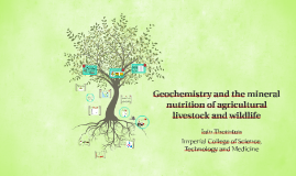 Geochemistry and the mineral nutrition of agricultural lives