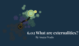 6.02 What are Externalities?