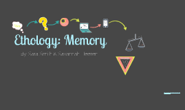 Ethology Project: Memory
