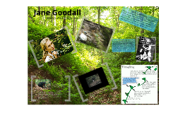 Copy of Jane Goodall