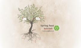 Spring Boot - Shbdn