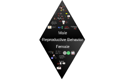 Lecture 15: Reproductive Behavior