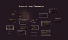 Copy of Patterns in Human Development