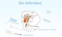 Die Gallenblase