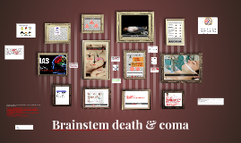 Copy of Brainstem death & coma