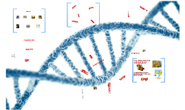 Biotehnologija