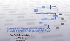 Copy of VALIDACIÓN DEL PROCESO DE PASTEURIZACIÓN DE LA LECHE (DETERM