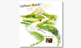 Copy of AVID- Culture Shock