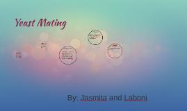 Yeast Mating