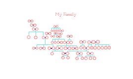 Copy of Copy of Family tree