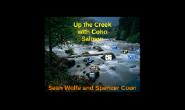 CBSL Final: Up the Creek with Coho Salmon