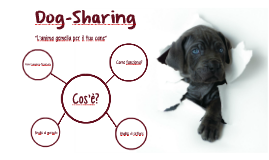 Copy of DogSharing