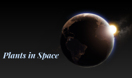 Plants in Space