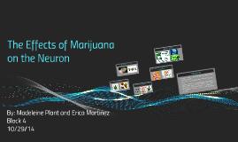 The Effects of Marijuana on the Neuron