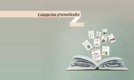 Categorias gramáticales
