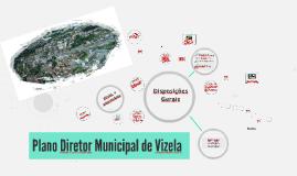 Plano Diretor Municipal de Vizela