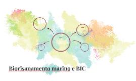 Biorisanamento Marino e BIC