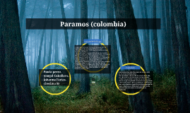 Copy of Paula Dayhanna Perez Cardenas, Yangen